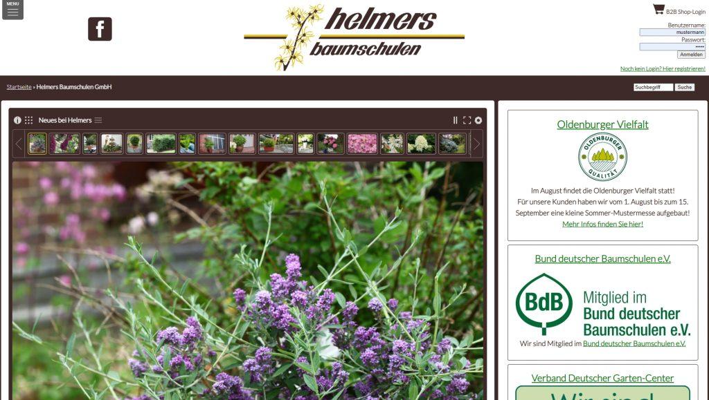 Helmers.de